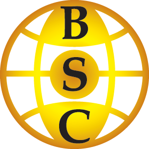 File:BSC Globe.png